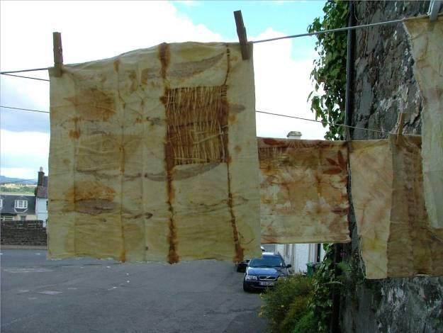 Cloth 8