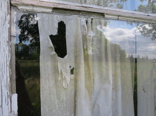 Fönster 3